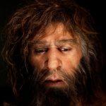 Tolerancia neandertal